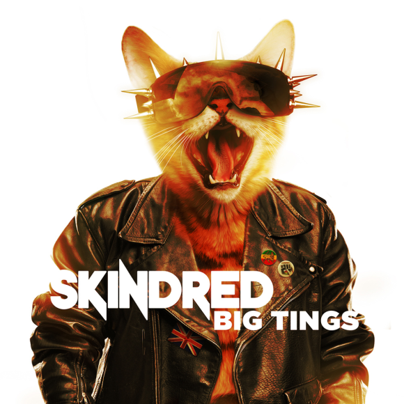 Image result for skindred big tings